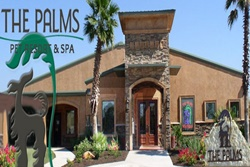 the palms pet resort and spa in san antonio texas, pet resort in san antonio texas
